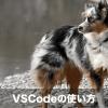 【ゼロから!】Visual Studio Codeのインストールと使い方